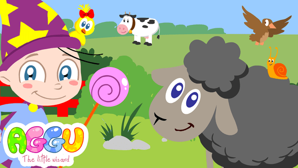 Aggu Baa Baa Black Sheep thumbnail
